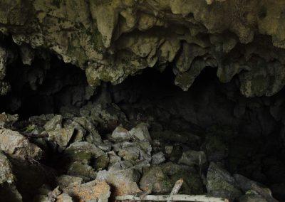 Cueva en el bosque
