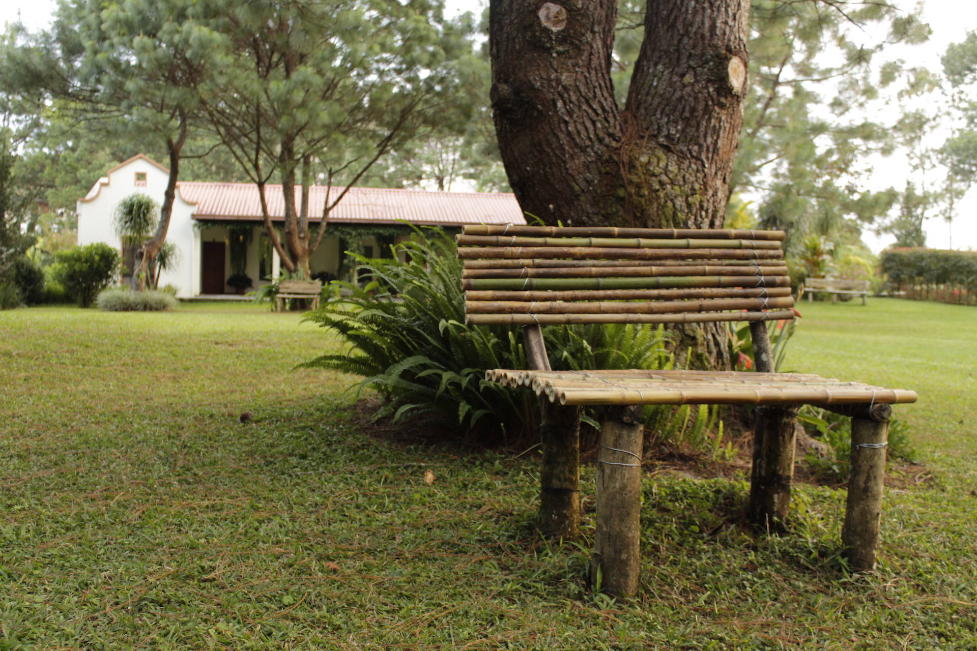 Casa Gaia - Jardín
